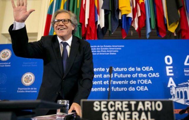 El triunfo de Venezuela en la OEA, Almagro y la derecha venezolana