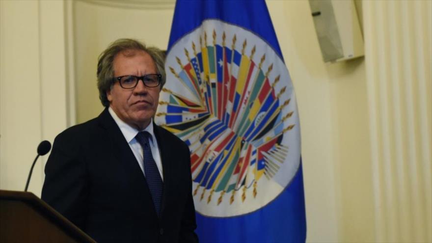 La OEA, Ministerio de las Colonias