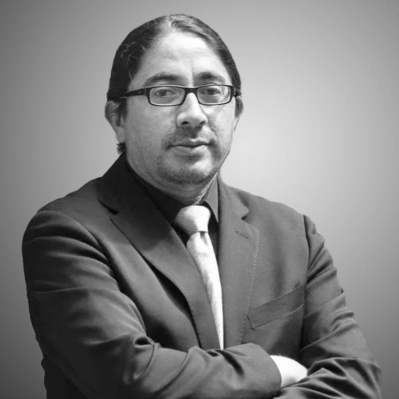 René Ramírez Gallegos